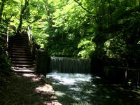 Take a hike - Spring Mill State Park