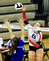 Outside hitter has been force for fifth-ranked Center Grove