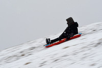 Photo gallery - Sledding at the park