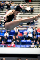 Center Grove girls 7th at IHSAA state swimming, diving meet