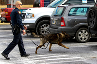K-9s foster lifetime loyalty with police